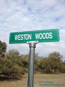 Weston Woods Watermarked