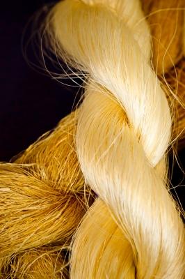 Strand by TCJ2020 from FreeDigitalPhotos.net